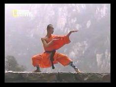 kung fu snake form - YouTube