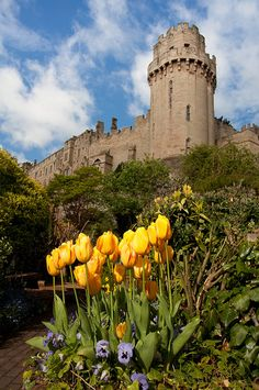 UK-View from The Old Mill gardens - adjacent to Warwick Castle