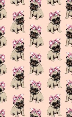 Learn all about pug, this breed of adorable dogs and loved worldwide! Characteristics, care, behavior, health and trivia about Pugs. Wallpaper Pug, Tier Wallpaper, Animal Print Wallpaper, Cute Wallpaper Backgrounds, Wallpaper Iphone Cute, Wallpaper Wallpapers, Amor Pug, Baby Animals, Cute Animals