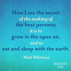 BFG by Roald Dahl Quotes | Pin by Honest Tea on Quotes To Inspire | Pinterest
