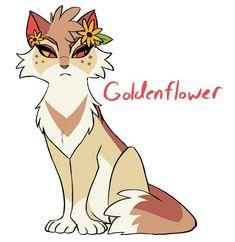 Goldenflower (redesign) by SmolToxin on DeviantArt Warrior Cats Series, Warrior Cats Fan Art, Warrior Cats Books, Warrior Cat Drawings, Warrior Cats Art, Cat Character, Character Design, Cat Anatomy, Cat Jokes