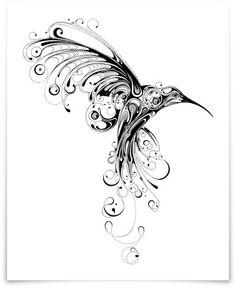 Hummingbird by Si Scott for the Art Prints