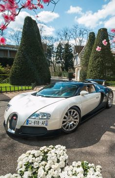 Bugatii Veyron Grand Sport Vitesse Your rebilling date has been adjusted to 2015-08-13.