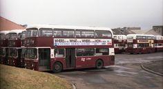Buses And Trains, Double Decker Bus, Bus Coach, Edinburgh Scotland, Busses, Chevrolet Trucks, Public Transport, Liverpool, Transportation