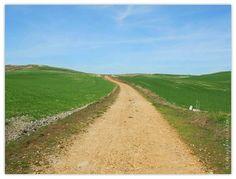 Pilgrimage in the province of Burgos - Camino de Santiago