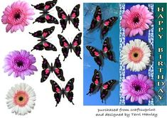 3D card, for a birthday, has beautiful gerbera's flowers and butterflies.  This card comes in two different colours