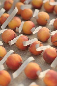 Southern Peach Escort Cards   Mango Studios