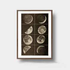The Moon in Black and white Wall Art Print showing eight phases in incredible detail