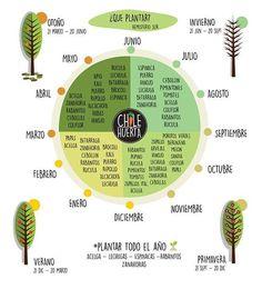 Infografía interesante sobre qué podemos plantas y cuál es la mejor época del año.