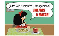 La iguana TV   Noticias, información y política