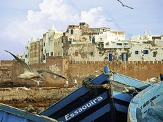 Blue fishing boats on an ocean coast in Essaouira.