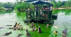 The11 Most Dangerous Tourist Destinations inthe World