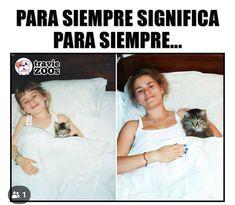 Cat Memes, Dankest Memes, Funny Memes, Death Note Funny, Barbie, Spanish Memes, Disney Memes, Animal Memes, Really Funny