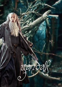 Gandalf the Grey, The Hobbit: The Desolation of Smaug