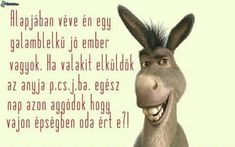 Humoros képek Wtf Funny, Funny Jokes, Funny Bunnies, Funny Photos, Cyberpunk, Happy New Year, Motivational Quotes, Have Fun, Books