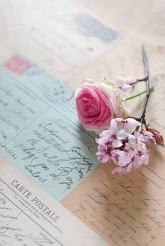 Vintage postcards from ana--rosa Just Girly Things, Beautiful Things, Flower Birthday Cards, Birthday Wishes, Happy Birthday, Old Letters, Shabby Chic, Ps I Love, Handwritten Letters