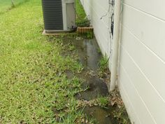 Poor drainage at foundation - proved that moisture intrusion into interior