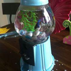 Gumball machine turned into fish tank :)