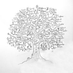 Sam Grenda thinks that this is an important picture of a family tree because this represents how Esperanza and Estevan never had a family because they were immigrants from Guatemala, and went to America to start another life. Family Tree Designs, Family Tree Art, Genealogy Chart, Family Genealogy, Family Research, Family Roots, Ancestry, Family History, Coloring Pages