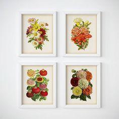 Botanical illustration set Antique flower by RestoredBotanicalArt
