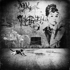 Street Art | Very cool photo blog
