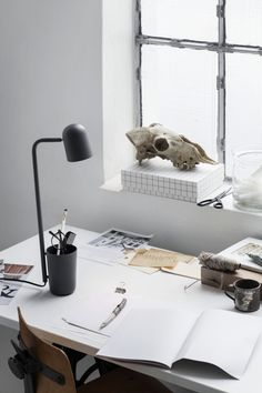 Bird Buddy an amazing desk lamp with storage for pens and accessories. love the styling too