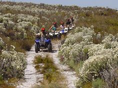 Tri Active Events Management - Quad Biking near Grabouw, Overberg Sa Tourism, Quad Bike, Adventure Activities, Event Management, Countries Of The World, Biking, Event Planning, South Africa, Country Roads