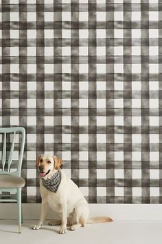 Magnolia Home Watercolor Check Wallpaper by in Black, Wall Decor at Anthropologie Bold Wallpaper, Temporary Wallpaper, Unique Wallpaper, Pattern Wallpaper, Wallpaper Ideas, Wallpaper Wallpapers, Wallpaper Designs, Bedroom Wallpaper, Magnolia Homes