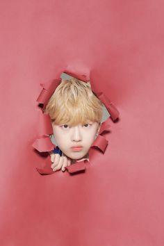 Produce 101, Treasure Boxes, Tinkerbell, Boy Groups, Disney Princess, Disney Characters, Boys, Random, Korea
