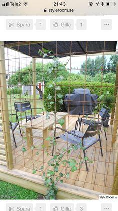 Garden Privacy, Garden Trellis, Garden Climbing Frames, Garden Solutions, Home Garden Design, Modern Backyard, Diy Garden Projects, Garden Spaces, Front Yard Landscaping