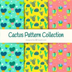 Colorful cactus pattern collection