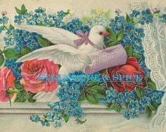 Digital Library: Edwardian Era Best Wishes Postcard Image With White Dove Among Red Rose Blossoms. This Card image is Circa Early 1908. - Edit Listing - Etsy