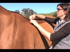This video is awesome! I learned so much in 2 minutes. How to fit your saddle