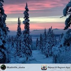 Your essential beauty for the night courtesy of @cabinlife_alaska  Sweet dreams.  Double tap if you enjoy.