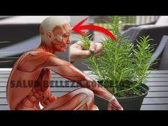 YouTube Home Remedies, Natural Remedies, Health Tips, Garden Sculpture, Statue, Yoga, Youtube, Gardens, Carpet
