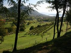 Dalla pianura al Lago di Garda #Bike#inLombardia http://www.in-lombardia.it/