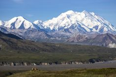 Denali National Park and Preserve (Alaska) is six million acres of wild land, bisected by one ribbon of road. Travelers along it see the relatively low-elevation taiga forest give way to high alpine tundra and snowy mountains, culminating in North America's tallest peak, Mount McKinley – which is still growing at about 1 millimeter per year. Wild animals large and small roam unfenced lands, living as they have for ages. Photo of a bear digging in front of Mount McKinley by Daniel A.