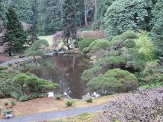 Japanese Garden at the Bloedel Reserve