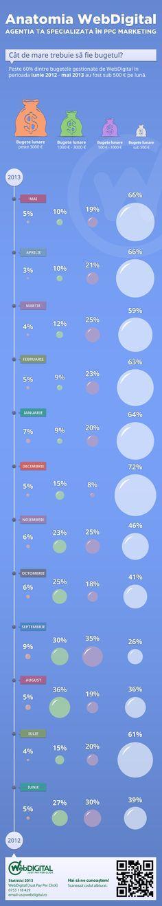 O retrospectivă a bugetelor gestionate de WebDigital  în perioada iunie 2012 - mai 2013!