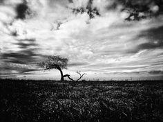 On the horizon  #iphoneography #shotoniphone #exploretocreate #ontheroad #filmmaking #moviemaking #onset #landscape #monochrome #blackandwhite #vsco #vscocze #vscoczech #igerscz #iglife #iglifecz #travelphotography