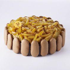 Festif, le gâteau Mogador, l'alliance d'un biscuit macaron chocolat, ganache et chantilly au chocolat au lait et de fruits exotiques: fruits de la Passion et ananas rôti caramélisé.