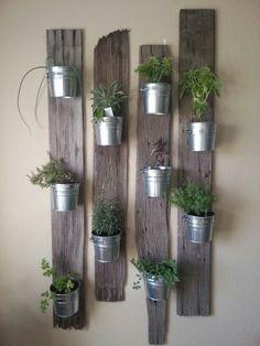 Um jardim para cuidar: Não ter jardim não é desculpa ! pode cultivar na sua cozinha..