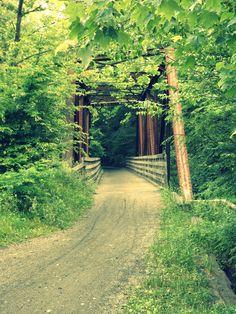 The Virginia Creeper trail.