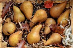 "Autumn sweet pears ""ПРО груши"" для #фудфотооктябрь_16 от @foodphotomonth  #foodphotomonth #foodphotononstop #груша #осень #фрукты #веган #витамины #pears #fruit #healthyfood #snack #autumn #beautifulcuisines #feedfeed #tastyfood #foodstagram #foodphoto #здороваяеда #top_food_of_instagram #foodgasm #foodstyling #foodphotographer #foodie #фотоеды#vegan #vegetarian  Yummery - best recipes. Follow Us! #tastyfood"