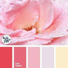 Color Matching Palette Pastel Red Colour Palettes Balance