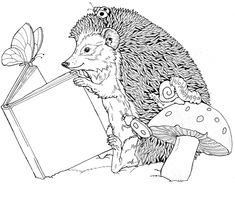 Coloring Page - Hedgehog animals coloring pages 3