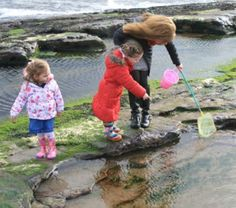 Rock Pool Guddle am 21 July, always a very popular event. Grab your pails and nets! Put your wellies on! Join marine biologist, Bernie McConnell, and explore the hidden delights of Crail's Rock pools. What will you find? Surprises will await! Not to be missed!