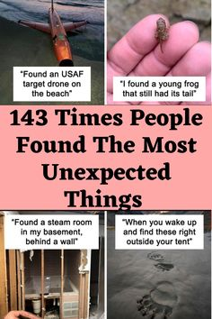 143 Times People Found The Most Unexpected Things (New Pics) Clean Funny Jokes, Lame Jokes, Terrible Jokes, Crazy Funny Memes, Love You Funny, Seriously Funny, Really Funny, Funny Gags, Wtf Funny