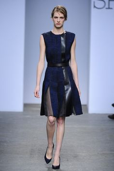 Sportmax RTW Fall 2013