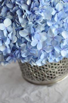 simplesmente azul ;